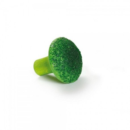 Brokuł, Erzi